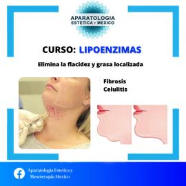 CURSO LIPOENZIMAS